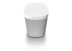 One SL speaker-White