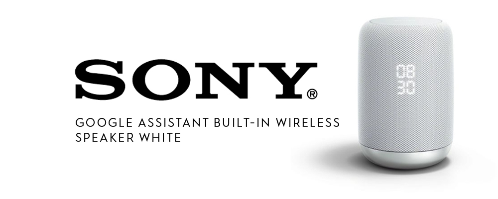 Sony Google Assist
